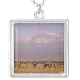 Collier Le Kenya : Parc national d'Amboseli, éléphants et