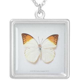Collier Le papillon avec l'envergure, a trouvé dans les