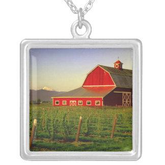 Collier Le soleil de soirée sur une grange dans Skagit de
