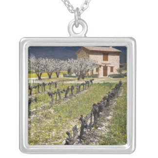 Collier Le vignoble dormant, fruit fleurit, la maison en