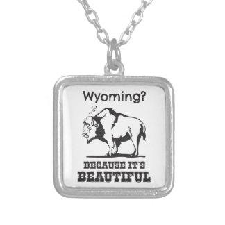Collier Le Wyoming ? Puisqu'il est beau