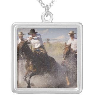 Collier Les Etats-Unis, Orégon, Sénèque, ranch de