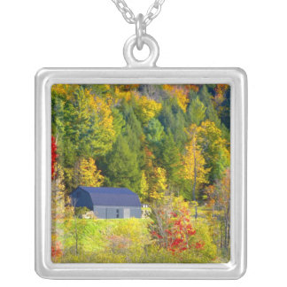 Collier Les Etats-Unis, Vermont. Foilage de chute le long