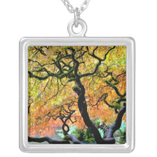Collier Les Etats-Unis, Washington, Seattle, jardin de