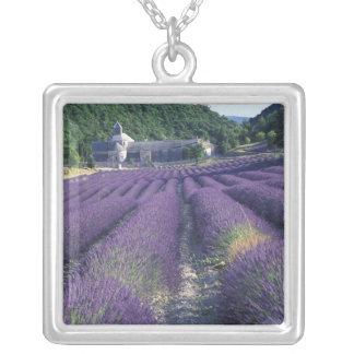 Collier L'Europe, France, Provence. Champs de Lavander