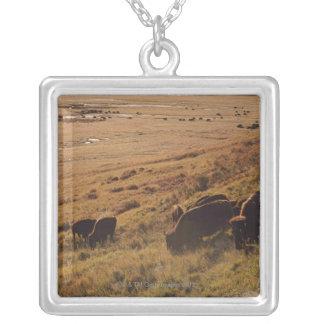 Collier Lever de soleil sur le bison