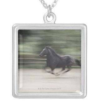 Collier L'Italie, Latium, galoper de cheval de Maremma