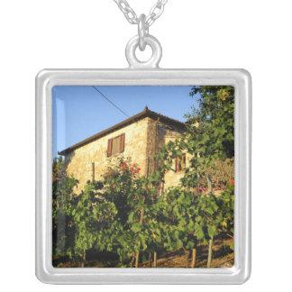 Collier L'Italie, Toscane, Greve. Scènes de vin de fin