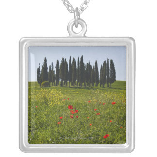 Collier L'Italie, Toscane, Val D'Orcia, paysage