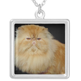 Collier Long chat russe de cheveux