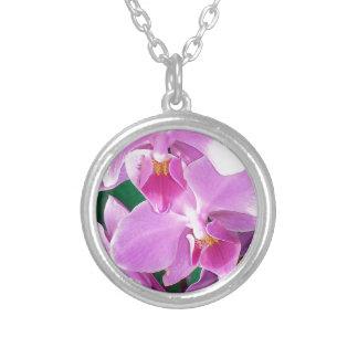 Collier L'orchidée fleurit plan rapproché dans le rose