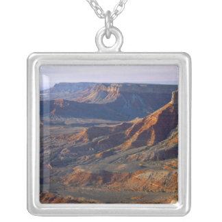 Collier Monument national de Canyon-Parashant grand,