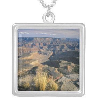 Collier Monument national de Canyon-Parashant grand, 2