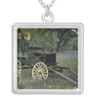 Collier N.A., Etats-Unis, le Texas, Devine, vieux chariot