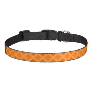 Collier orange de diamant collier de chien