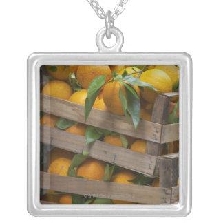 Collier oranges fraîchement sélectionnées