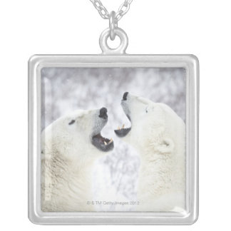 Collier Ours blancs jouant dans la neige