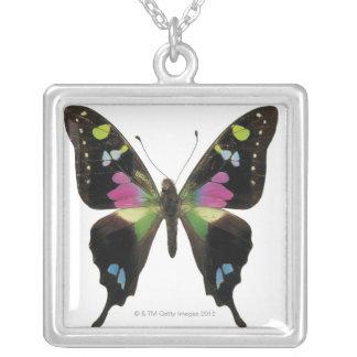 Collier Papillon de Graphium