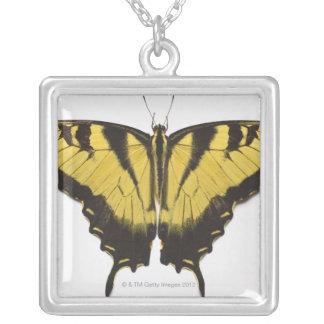 Collier Papillon occidental de machaon de tigre