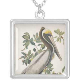 Collier Pélican de Brown d'Audubon