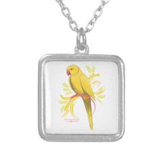 Collier Perroquet jaune de Ringneck d'Indien