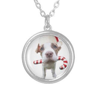 Collier Pitbull de Noël - pitbull de père Noël - chien de