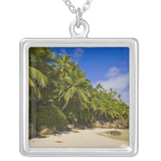Collier Plage 3 d'Anse Victorin