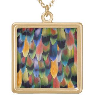 Collier Plaqué Or Plumes colorées de perroquet de perruche