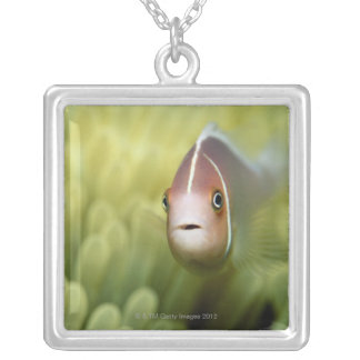 Collier Poissons d'anémone roses