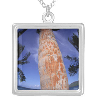 Collier Polynésie française, Bora Bora, palmiers