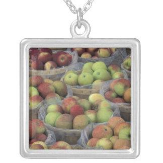 Collier Pommes de Macintosh de l'état de New-York dans les