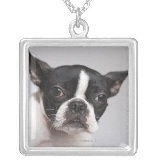 Collier Portrait de chien