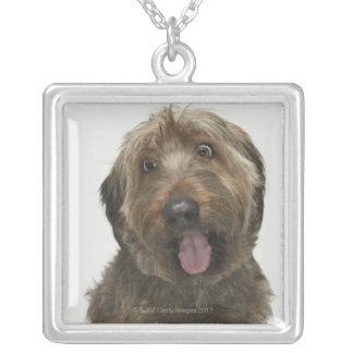 Collier Portrait de chien de Briard