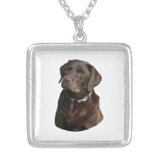 Collier Portrait de photo de Labrador de chocolat