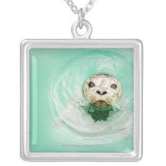 Collier Portrait d'un joint dans l'eau