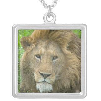Collier Portrait masculin de lion, Afrique de l'Est,