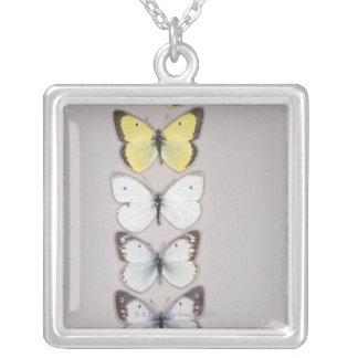Collier Rangée des papillons