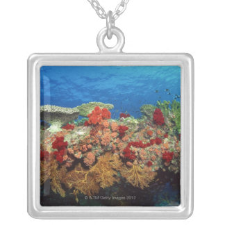 Collier Récif pittoresque des coraux durs, coraux mous
