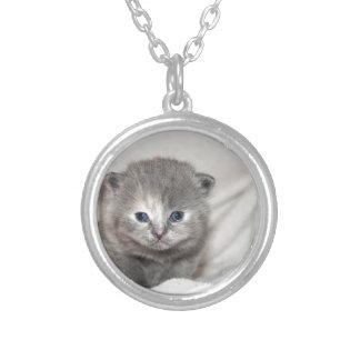 Collier Regardez ce petit chaton gris