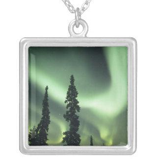 Collier Région des Etats-Unis, Fairbanks, Alaska central,