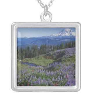 Collier Région sauvage des Etats-Unis, Washington Mt.