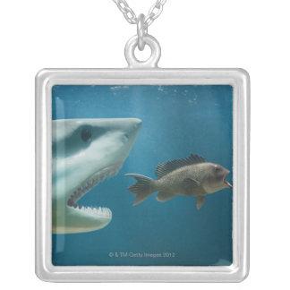 Collier Requin chassant le bar de mer chassant le jeune