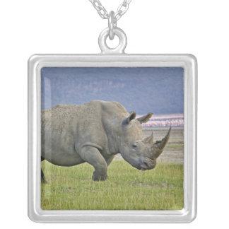 Collier Rhinocéros et éloigné blancs peu de flamants,