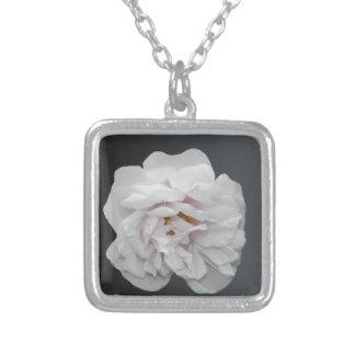 Collier Rose blanc