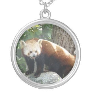 Collier rouge d'ours panda