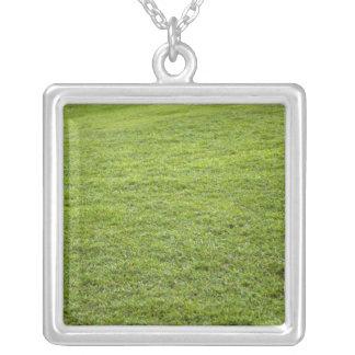 Collier San Juan, Porto Rico - l'herbe verte est