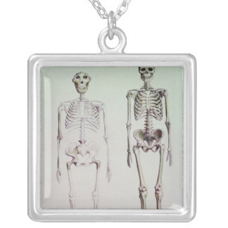 Collier Squelettes des australopithèques Boisei