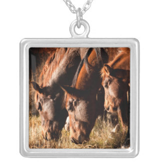 Collier Trois chevaux buvant dans la lumière sombre
