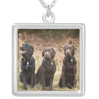 Collier Trois chiens d'arrêt de Labrador noirs