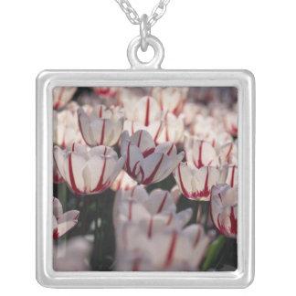 Collier Tulipes